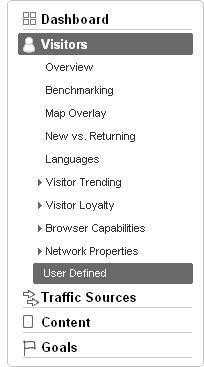 Google Analytics: User Defined